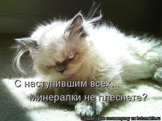 Котоматрица прикольные фото котов 1 (640x480, 53Kb)