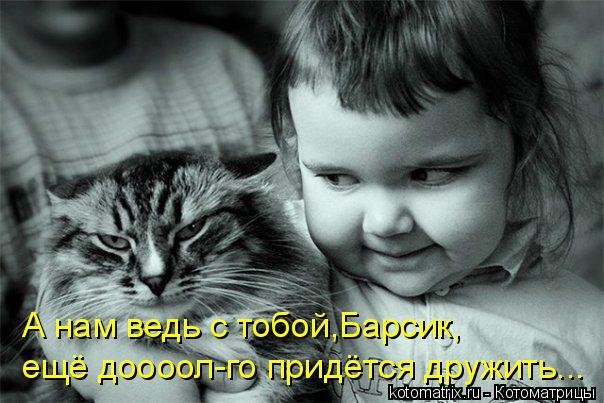 Котоматрица прикольные фото котов 3 (604x403, 53Kb)