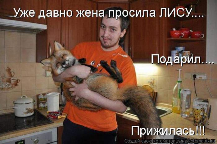 Котоматрица прикольные фото котов 22 (700x465, 55Kb)