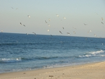 Превью Зимний океан. Юлия Ширяева (2) (700x525, 246Kb)
