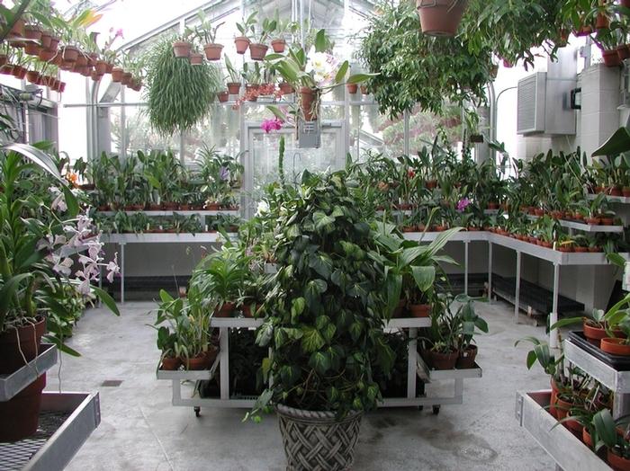 дом-музей Сады Хилвудa, Пенсильвания, США. 14443