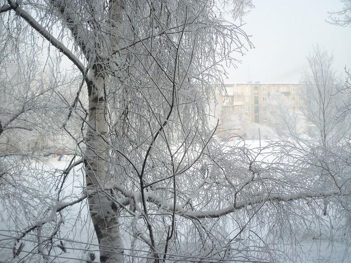 мороз 210112 001 (700x525, 166Kb)
