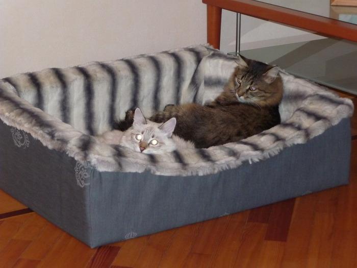 лежанка для кошки своими руками<br />