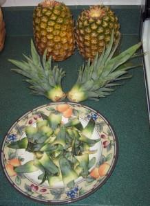 ananas6 (218x300, 27Kb)