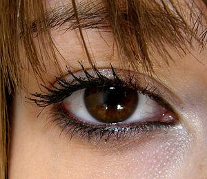 цвет глаз (300x260, 25Kb)