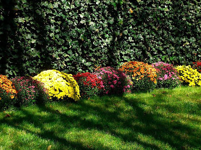 дом-музей Сады Хилвудa, Пенсильвания, США. 29064