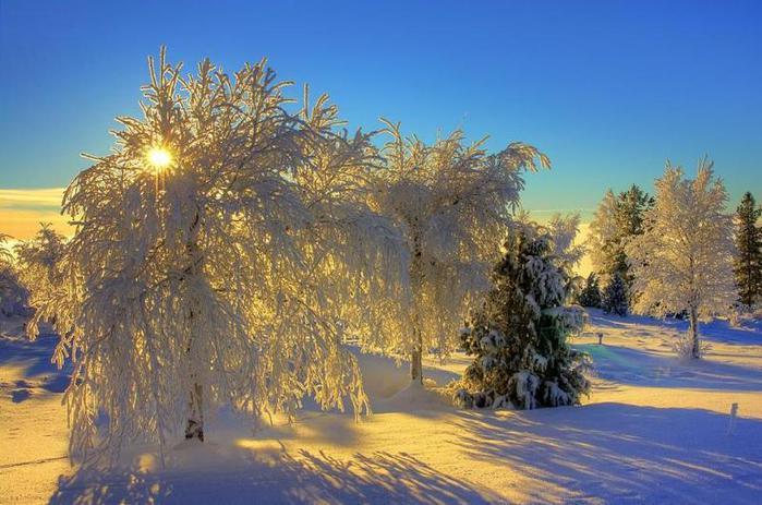 Красивая ЗИМА - HDR фото (700x463, 64Kb)