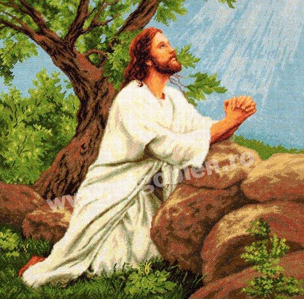 молящийся Иисус (600x591