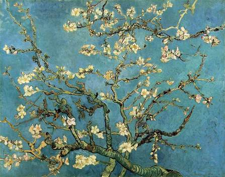 1326086723_almond_blossom_small (447x352, 40Kb)