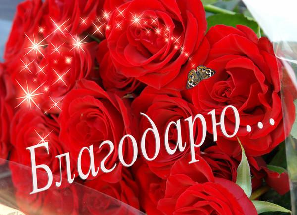 http://img0.liveinternet.ru/images/attach/c/4/82/656/82656196_3f7897461330.jpg