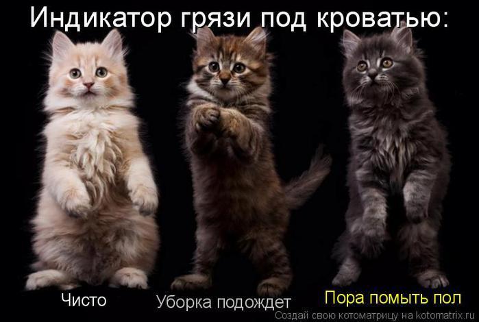 http://img0.liveinternet.ru/images/attach/c/4/82/681/82681182_3911698_0001.jpg