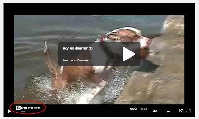2447247_video_vkontakte (640x384, 28Kb)