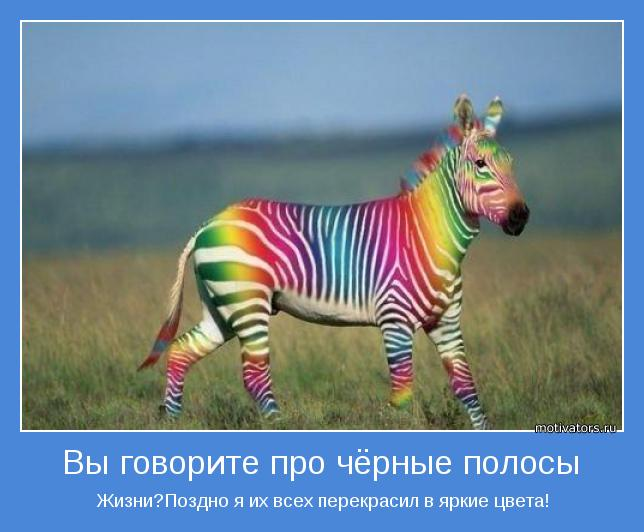3841237_motivator32021 (644x532, 42Kb)