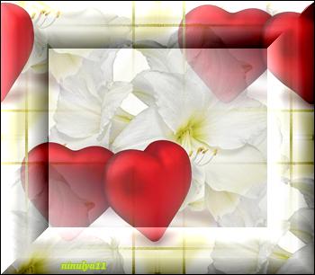 белые-цветы (350x306, 157Kb)