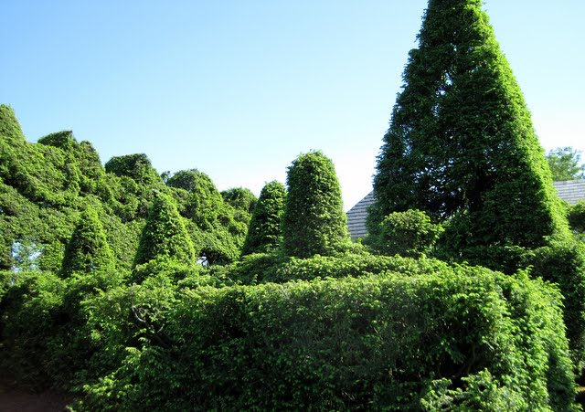 Ladew Topiary Gardens 27842