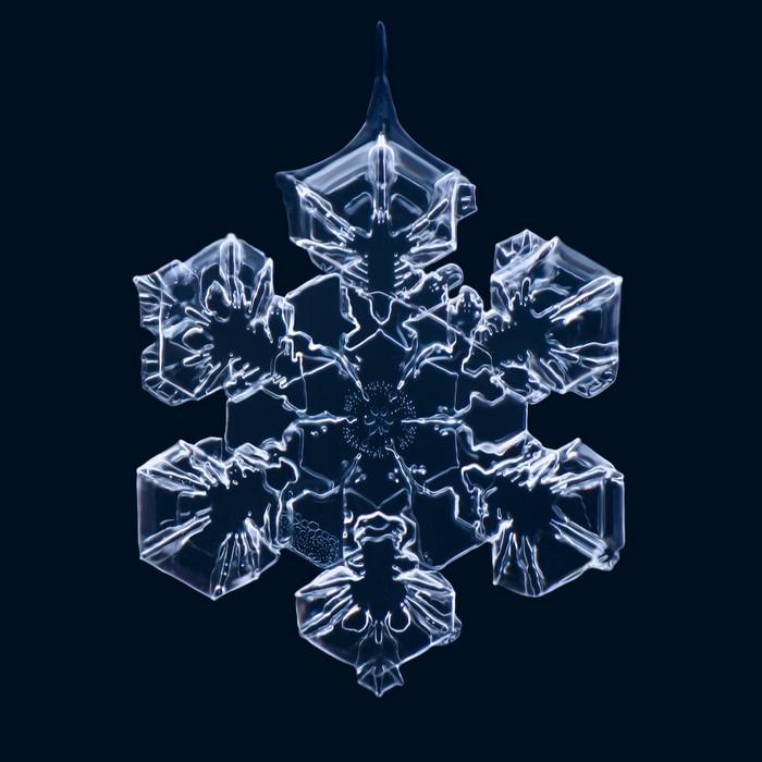 3925073_Matthias_Lenke_snowflakes_1 (700x700, 80Kb)