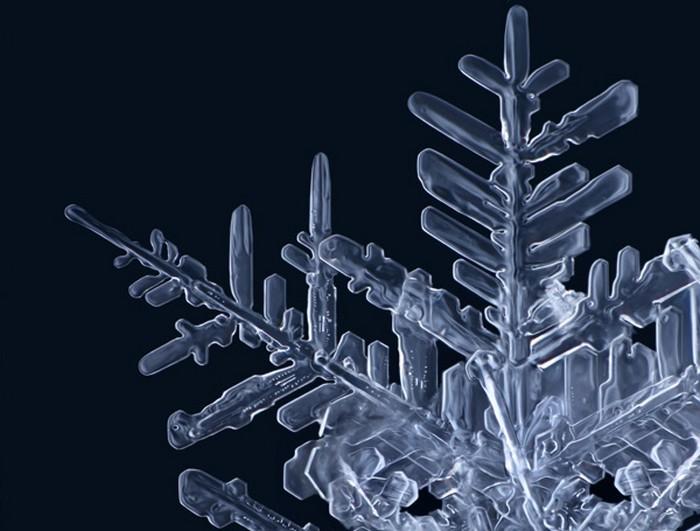 Matthias_Lenke_snowflakes_3 (700x531, 73Kb)