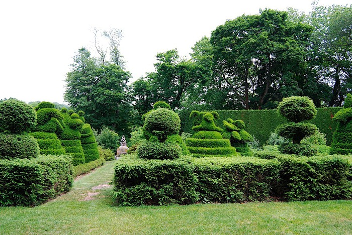Ladew Topiary Gardens 41389