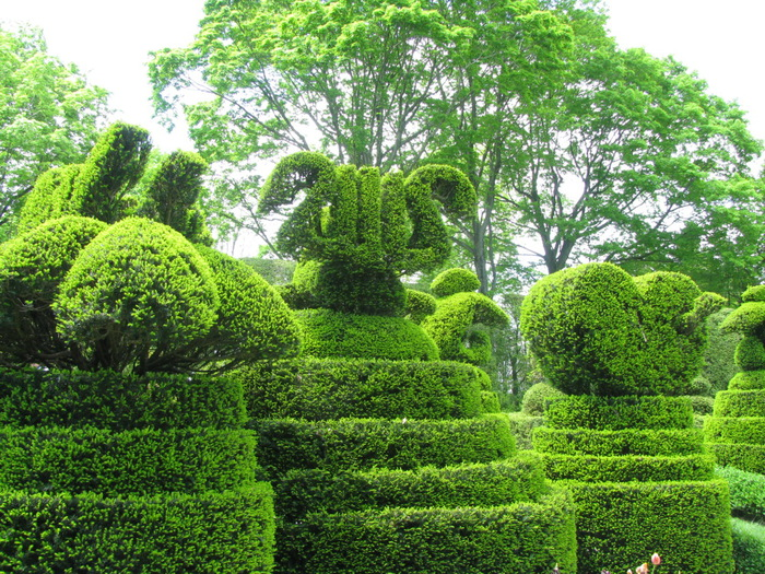 Ladew Topiary Gardens 40090