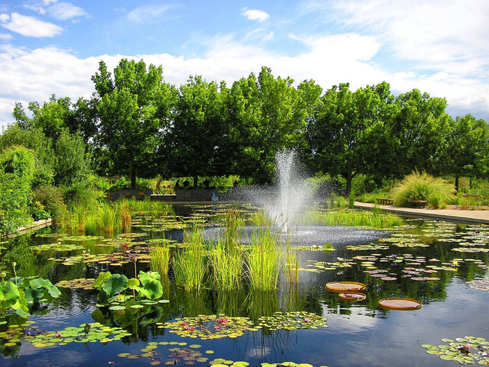 Denver_Colorado_Botanic_Garden (700x525, 261Kb)
