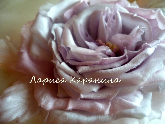 спектакль, роза жемчужная 067 (700x525, 245Kb)