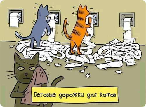 беговая дорожка для кота/3518263__ (500x367, 98Kb)