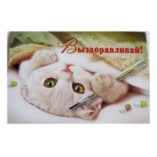 Открытка друг держись | Открытки поздравления: http://akalema.ru/otkry-tka-drug-derzhis/