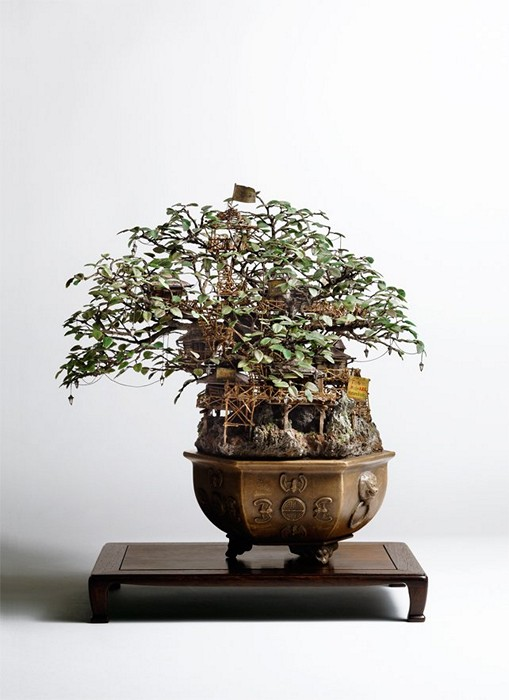 Takanori_Aiba_bonsai_3 (509x700, 67Kb)