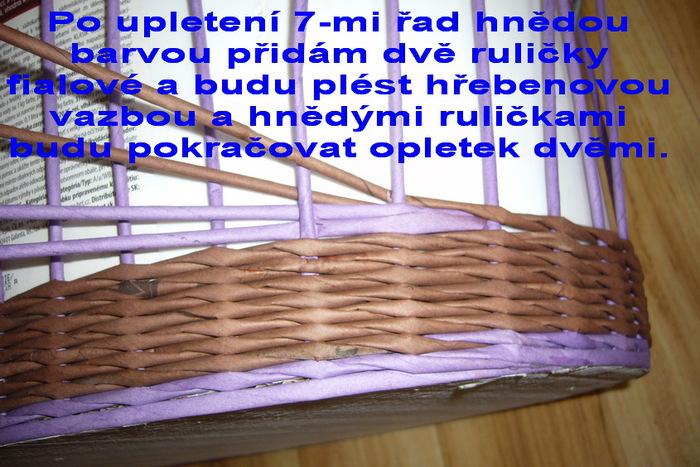 p1120261 (700x467, 145Kb)