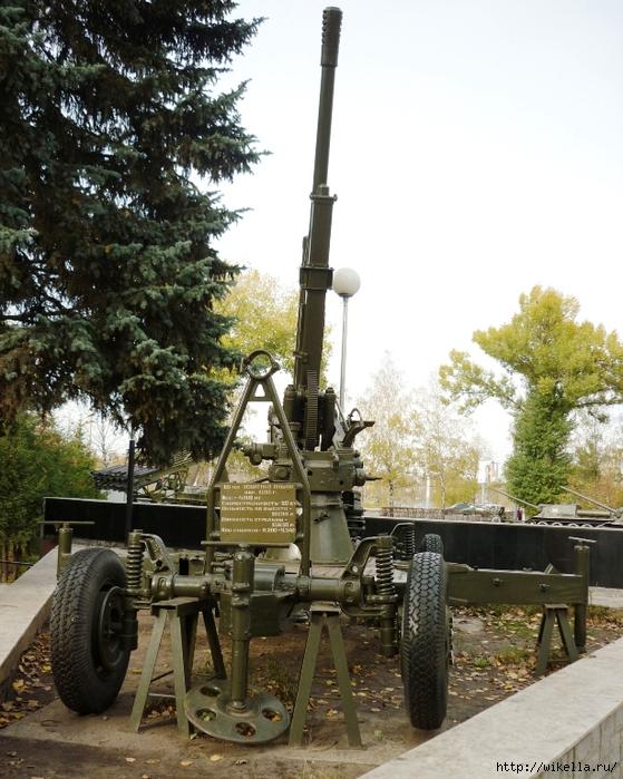 зен пушка2 (559x700, 340Kb)
