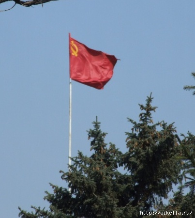муз флаг (403x450, 85Kb)