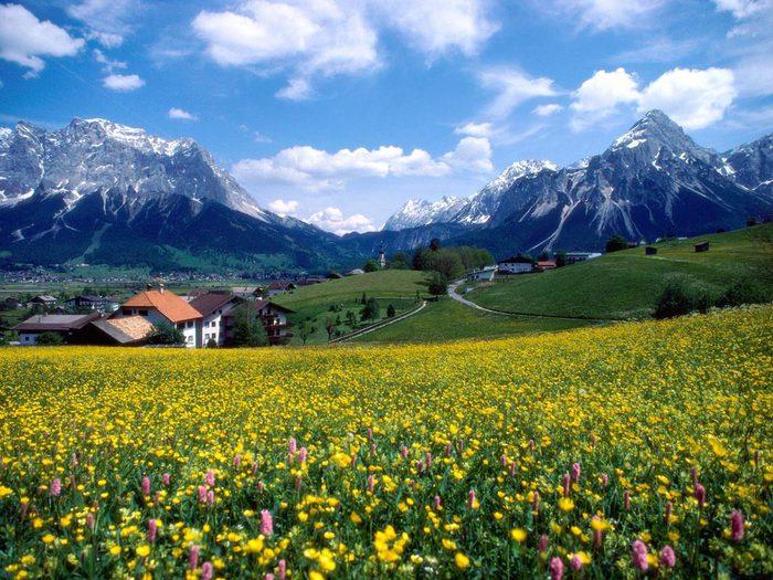 Весна природа красивая 12 (700x525, 113Kb)