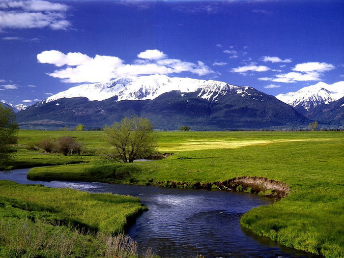 Весна природа красивая 26 (700x525, 125Kb)