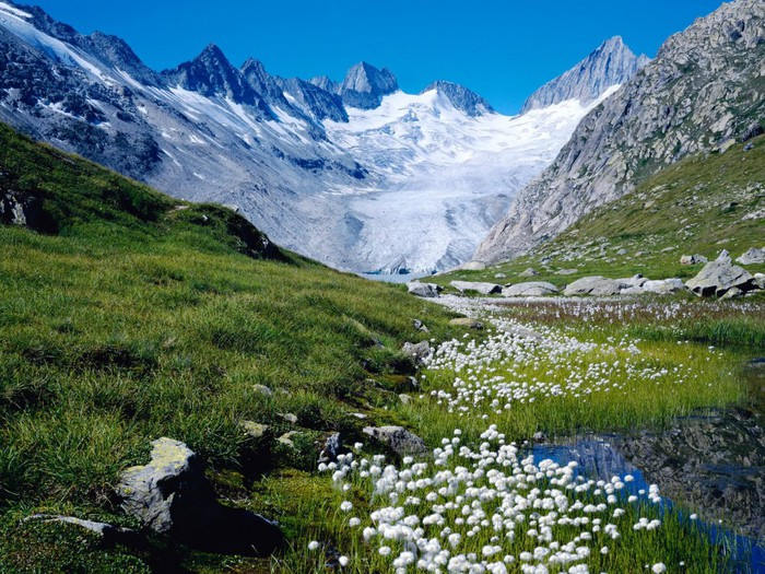 Весна природа красивая 39 700x525 167kb