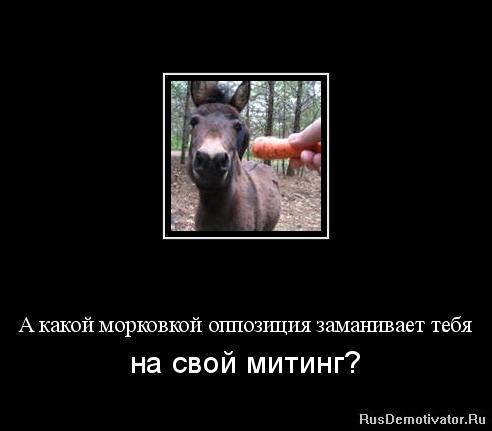 4816840_000032wt__ (492x431, 52Kb)