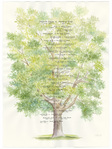 ������ Bennett-Family-Tree-lg (450x600, 192Kb)