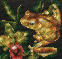 Набор для вышивки крестом Panna Ж-0399 Золотая лягушка.