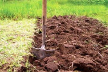 ...почвы, глубина которого будет