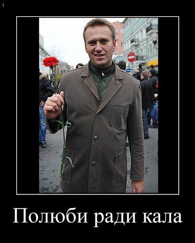 Навальный - полюби РадиКала (384x480, 31Kb)