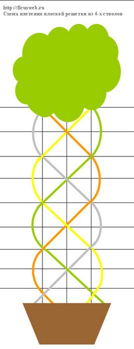 forma6 (268x700, 46Kb)