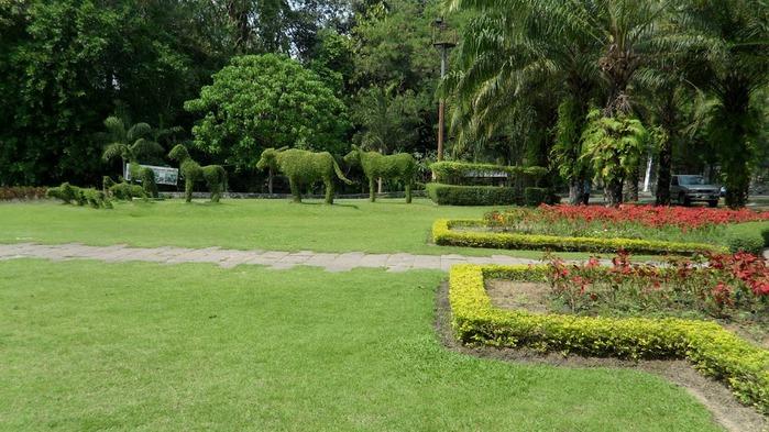 Парк Нонг Нуч (Nong Nooch Tropical Garden) 16310