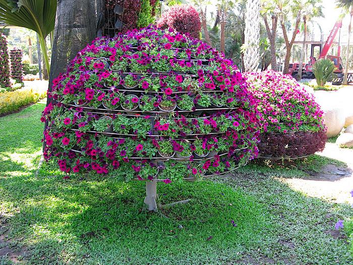 Парк Нонг Нуч (Nong Nooch Tropical Garden) 85845
