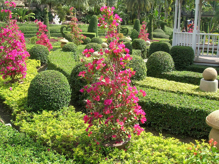 Парк Нонг Нуч (Nong Nooch Tropical Garden) 71858