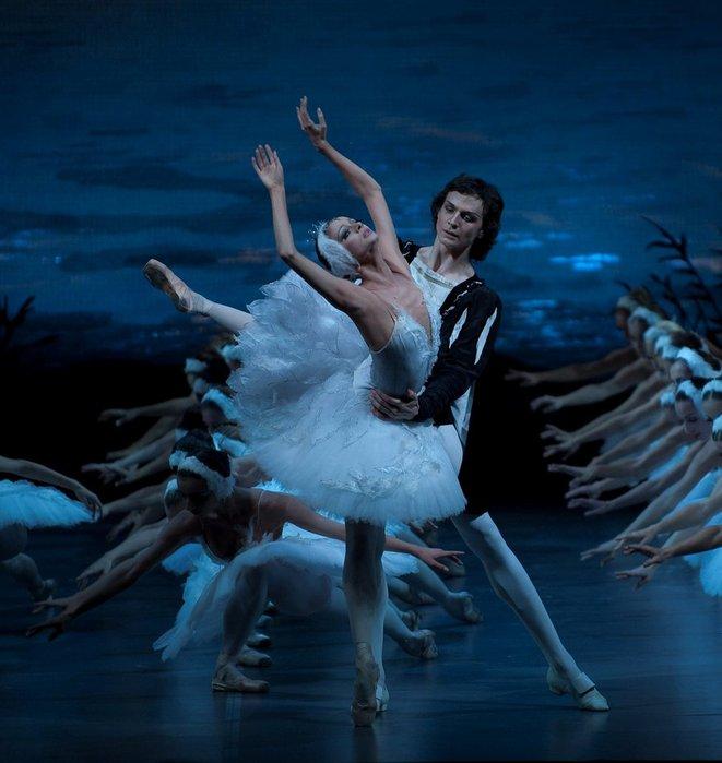 Mikhailovsky Ballet Swan Lake (661x700, 63Kb)