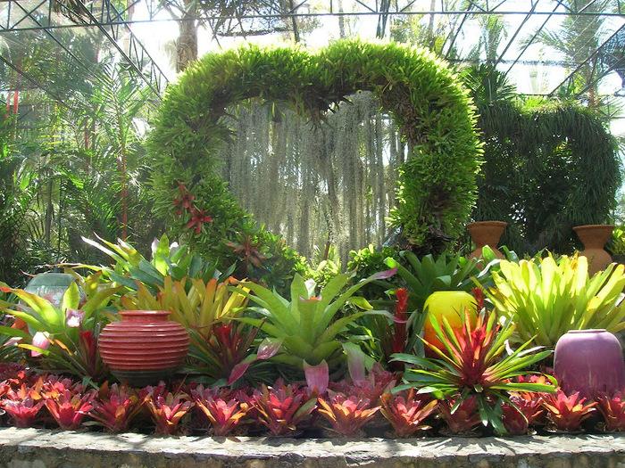Парк Нонг Нуч (Nong Nooch Tropical Garden) 10611