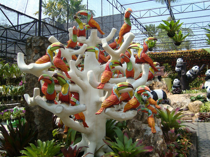 Парк Нонг Нуч (Nong Nooch Tropical Garden) 27101