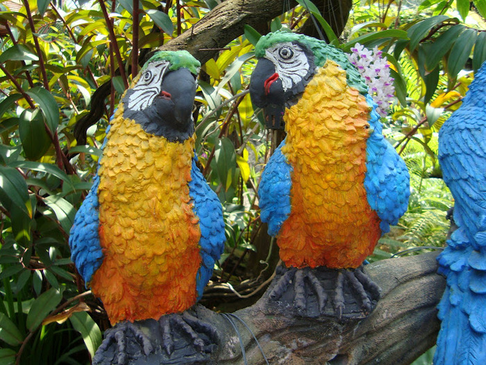 Парк Нонг Нуч (Nong Nooch Tropical Garden) 52223