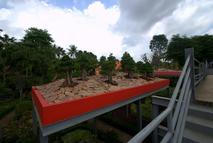 Парк Нонг Нуч (Nong Nooch Tropical Garden) 56448