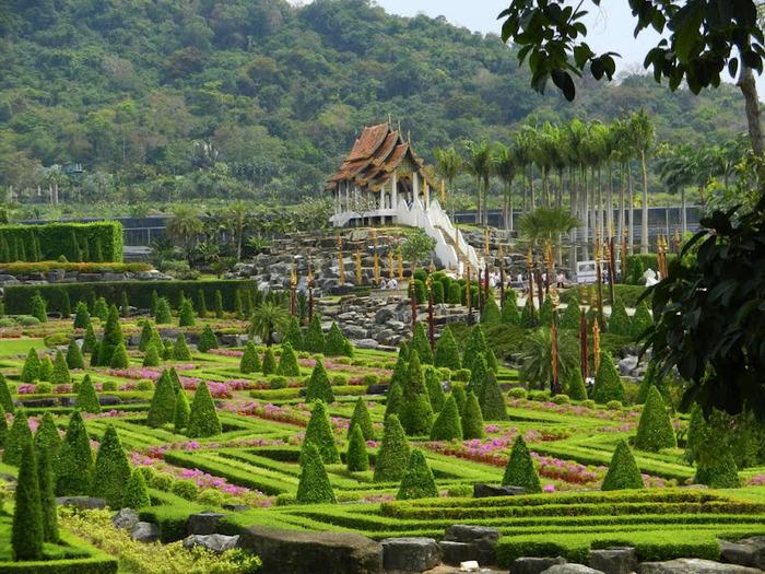 Парк Нонг Нуч (Nong Nooch Tropical Garden) 21559