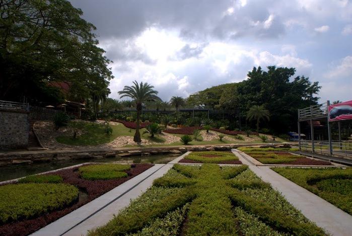 Парк Нонг Нуч (Nong Nooch Tropical Garden) 13175